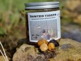 Tainted Tigers - Plum - Purple Pain